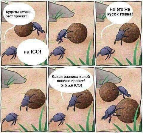 Участие в ICO прикол